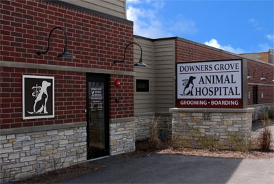 About Downers Grove Animal Hospital