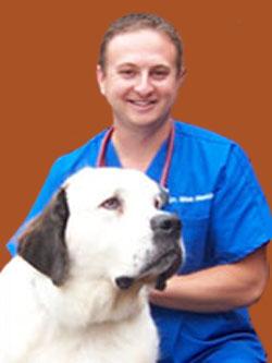 Dr. Max Merkin - Downers Grove Veterinarian