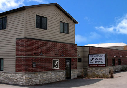 Downers Grove Animal Hospital Location