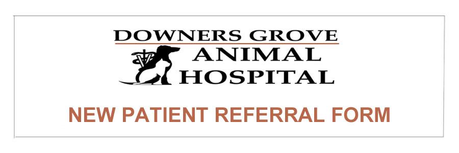 referral-form